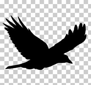 Bird Flight Bird Flight Silhouette PNG