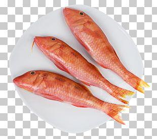 Fishing Food Fillet Australia PNG