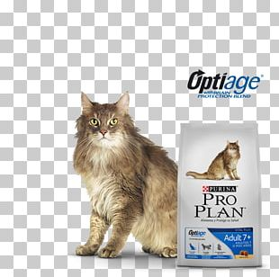 Maine Coon Whiskers Norwegian Forest Cat Cat Food Domestic Short-haired Cat PNG