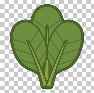 Organic Food Spinach Leaf Vegetable Computer Icons PNG