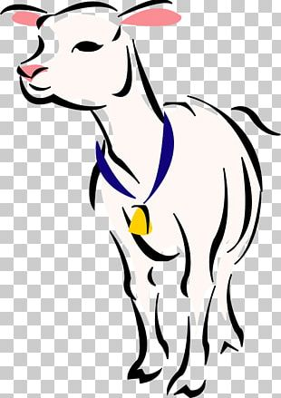 Boer Goat Sheep Lamb And Mutton PNG