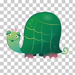 Turtle Sticker Wall Decal Reptile PNG