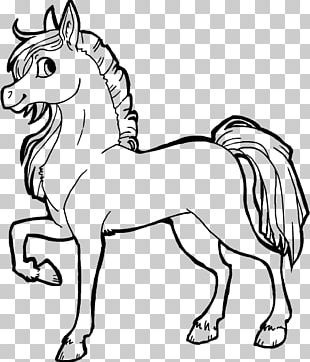 Arabian Horse Line Art Drawing PNG