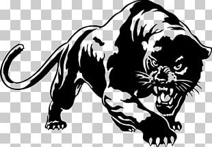 Black Panther Cougar YouTube PNG