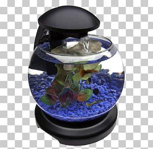 Aquarium Barcelona Goldfish PNG