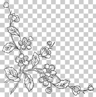 Sketch Of Flowers PNG