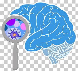 BRAIN Initiative Blue Brain Project Human Brain Project PNG