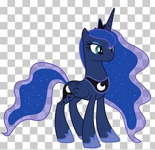 Princess Luna Princess Celestia Twilight Sparkle Rainbow Dash Pony PNG