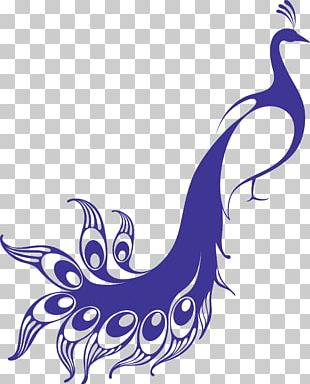Bird Asiatic Peafowl Feather PNG