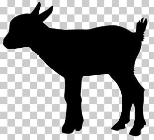 Sheep Goat Cattle Silhouette PNG