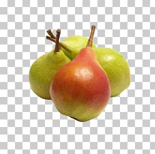 Fruit Tree Banana Orange Apple PNG
