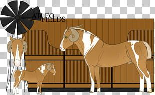 Stallion Mustang Bridle Mare Pony PNG