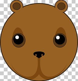 Brown Bear Giant Panda Polar Bear Animation PNG