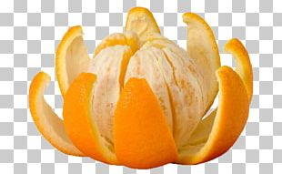 Crisp Orange Juice Fruit Peel PNG