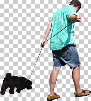 Dog Walking Dog Walking PNG