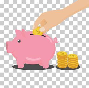 Money Piggy Bank PNG