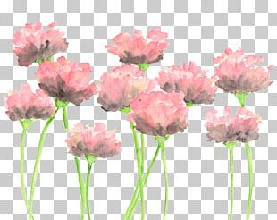 Watercolour Flowers Watercolor: Flowers Watercolor Painting Pink Flowers PNG