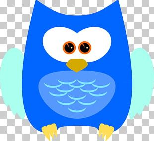 Bird Owl Beak Feather PNG