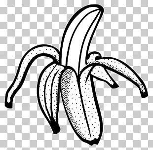 Banana Bread Line Art Drawing PNG