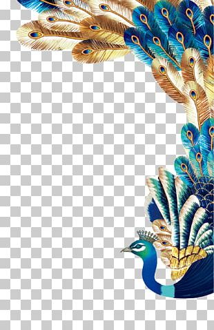 Peafowl Euclidean Feather PNG