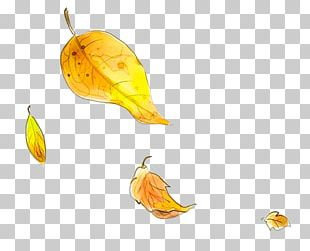 Autumn Leaf Yellow PNG