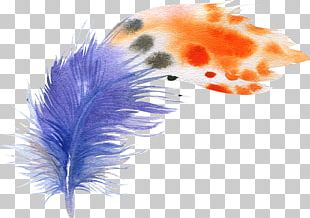 Bird Feather Watercolor Painting Drawing Illustration PNG