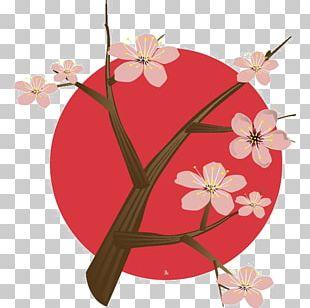 Japan National Cherry Blossom Festival PNG