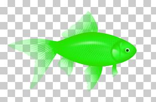 Fish Icon Computer File PNG