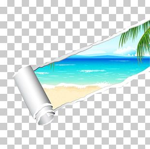 Sea Ocean Beach PNG