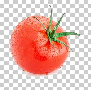 Plum Tomato Cherry Tomato Pizza Vegetable Tomato Slicer PNG