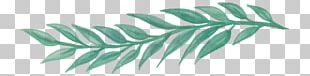 Watercolour Flowers Leaf Watercolor Painting Floral Design PNG
