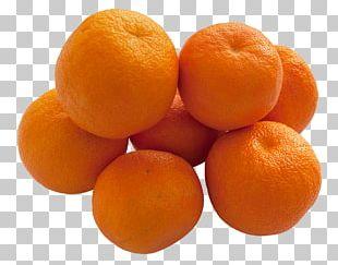 Bitter Orange Mandarin Orange Marmalade Tangerine Tangelo PNG