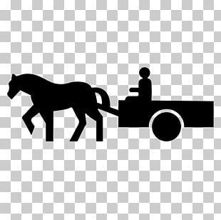 Panneau De Signalisation De Fin D'interdiction En France Panonceau De Signalisation Routière En France Horse Traffic Sign Panneau D'interdiction De Dépasser En France PNG