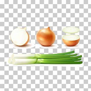 Shallot Potato Onion Yellow Onion Red Onion PNG