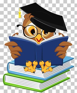Graduation Ceremony Owl Square Academic Cap Icon PNG