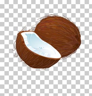 Coconut Euclidean PNG