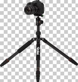 Tripod Photography Ball Head Carbon Camera PNG