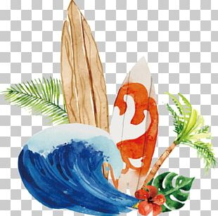 Euclidean Wave Surfing Surfboard PNG