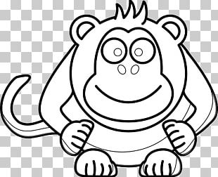 Drawing Black And White Monkey PNG