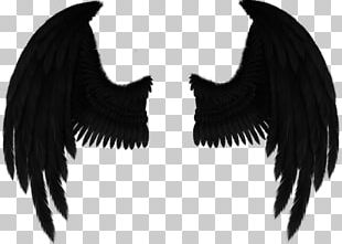 Drawing Fallen Angel Art PNG