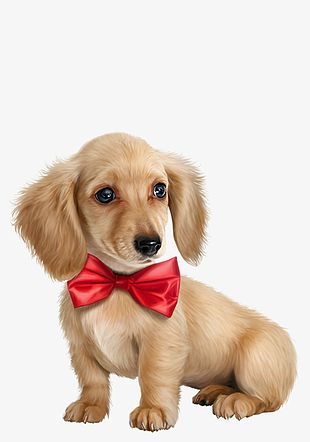 Cute Golden Puppies Free Hair Material PNG