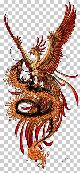Phoenix Chinese Dragon Fenghuang Tattoo PNG