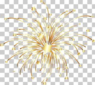 Fireworks Euclidean PNG