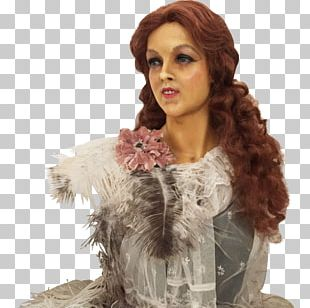 Feather Boa Wig Fur Long Hair PNG