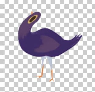 Trash Doves Tenor Gfycat Giphy PNG