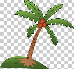 Coconut Tree Arecaceae Drawing PNG