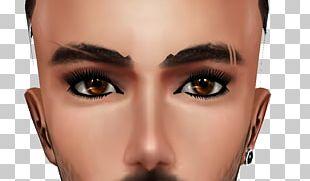Cosmetics Eyelash Eyebrow Face Eye Shadow PNG