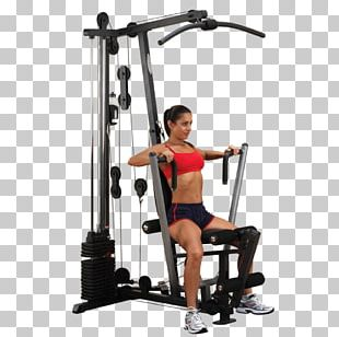 Fitness Centre Strength Training Physical Exercise Human Body Toning Exercises PNG