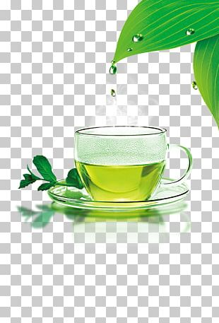 Green Tea Cafe Icon PNG