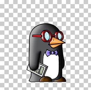 Penguin Mathematics Education Science Powtoon PNG